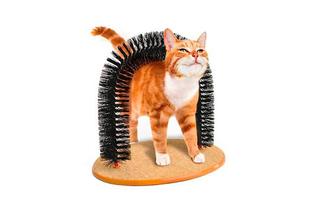 Masajeador para Gatos