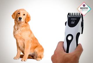 Maquina para cortar pelo para perros