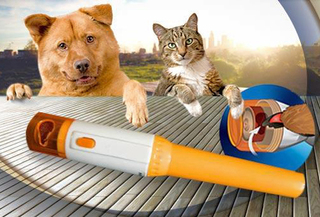 Lima de Uñas para Perros y/o Gatos