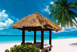 Punta Cana con Aéreo, Escápate al Paraíso del Todo Incluido!