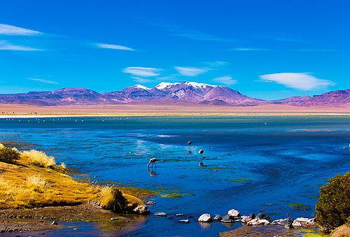 Verano 2017 San Pedro de Atacama, salidas fijas