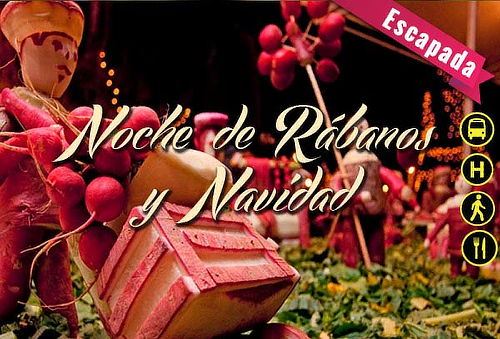 Oaxaca: Noche de Rábanos y Navidad ¡Descúbrelo! 3D/2Noches