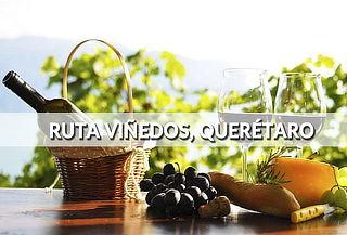 Paga 1/Viajan 2 ¡Ruta de los Viñedos en Tequisquiapan!