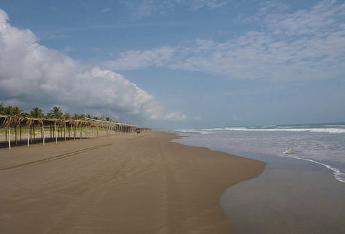 Manglares y Playas de Tecolutla ¡Puente de la Revolución!
