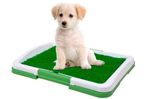Baño Portátil para Mascotas