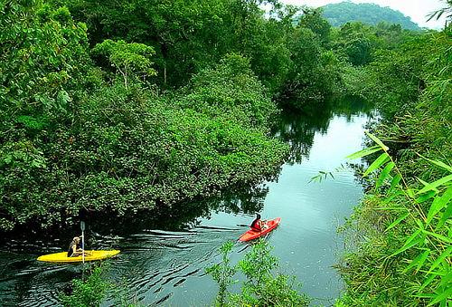 ¡FERIADO APEC! 3D/2N Eco Tour Amazon Camp Lodge - Iquitos