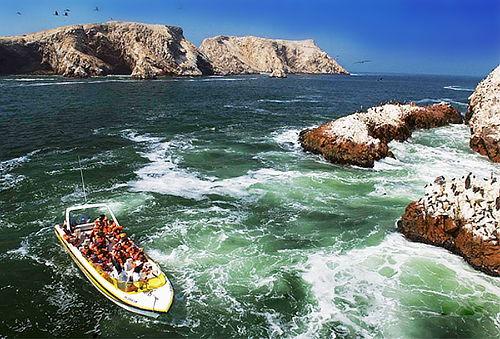 ¡Feriado APEC! Paracas - Ica + Areneros o Islas Ballestas