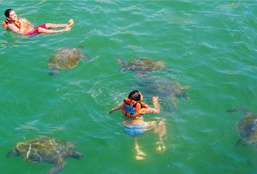 ¡Diversión en Máncora! Tour Tortugas Marinas