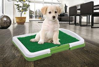 Baño Portátil Ecológico para Mascotas 3 Niveles - 50%