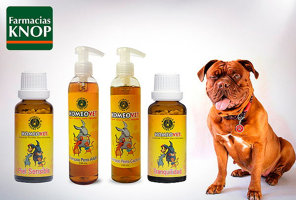 Homeovet: Shampoo y Terapia Floral a Elección para Mascotas