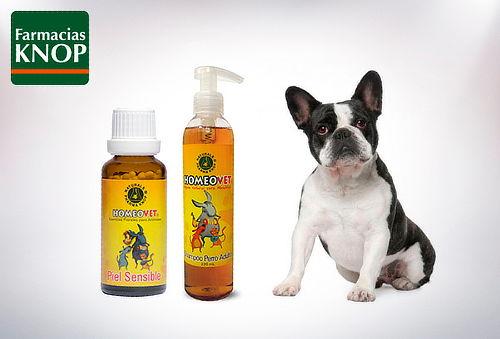 Homeovet: Shampoo + terapia floral a elección, Mascotas KNOP