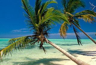 Punta Cana: Paraíso caribeño con todo incluido vía COPA
