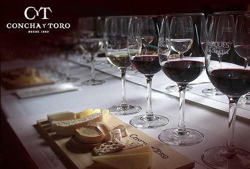 Wine Tour Viña Concha y Toro