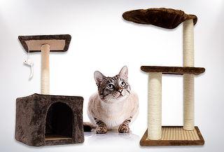 Rascador de Gato de 2 o 3 Pisos a Elección