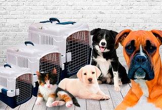 Jaula de Transporte para Mascotas, Tamaños S, M y L