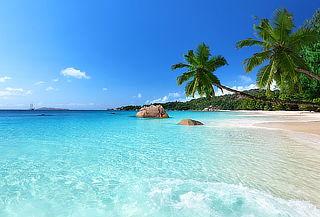 ¡Punta Cana en Hotel Belive! Aéreo + Todo Incluido