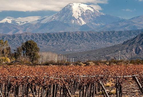 Escapada a Mendoza: 3 días, aéreo, hotel y más!