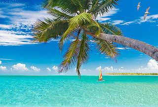 ¡Verano en Riviera Maya! Aéreo, 7 Noches Todo Incluido y Más