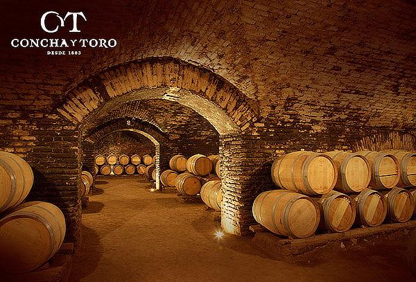 Wine Tour en Viña Concha y Toro