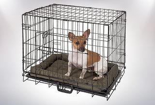 Jaula Plegable para Mascotas, Tamaño a Elección