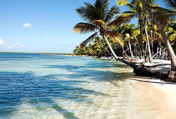 Enamórate de Punta Cana: Aéreo, Traslados, 7 Noches y Más