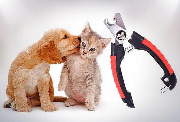 Cortauñas para Mascotas con Tope