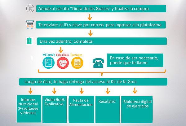 Dieta de Las Grasas, Tratamiento Online