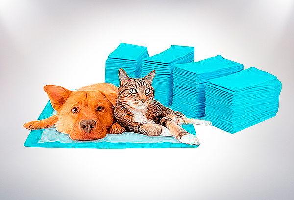 Pack 100 Toallas de Entrenamiento para Mascotas