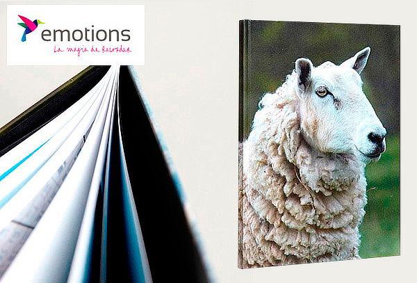 Photobook Revista Tapa Dura 40 Páginas en Emotions
