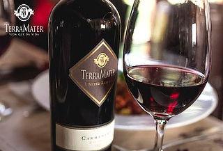 Wine tour Mediterraneo para 2 personas en Viña Terramater