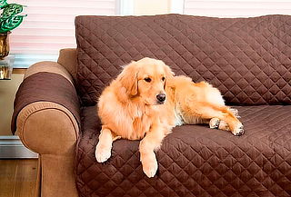 Funda Cobertor de Sillón para Mascotas