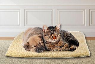 Cama termica confortable para Perros o Gatos