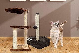 Rascador para Gatos, Modelo a Elección