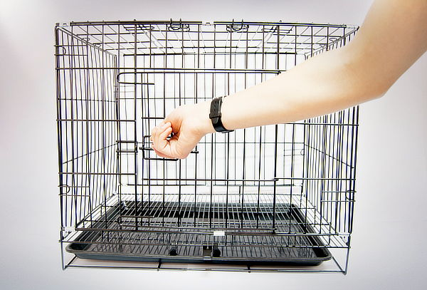 Jaula Plegable para Mascotas