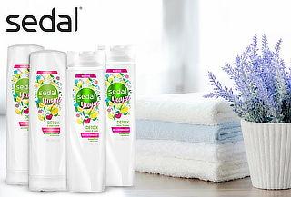 Pack de 2 Shampoo + 2 Acondicionador Sedal Detox 340 ML