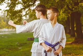 Un mes de Clases de Arte marcial para niños. Providencia