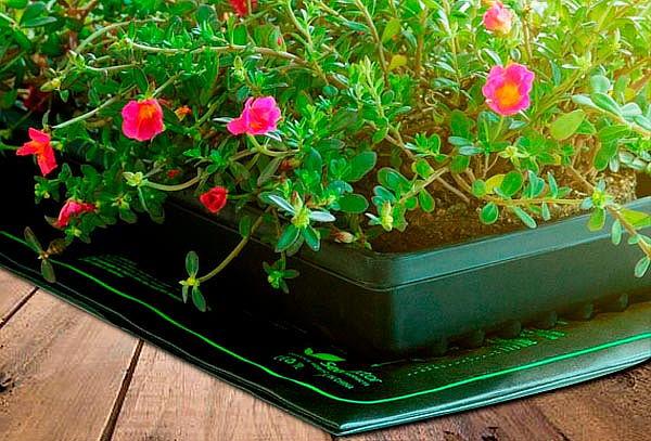 Kit para cultivo y jardinería