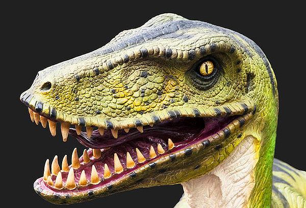 Expo Dinosaurios y Animales Superpoderosos, Independencia