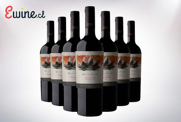 Pack de 6 o 12 Botellas de Vino Premium Despacho Incluido