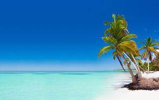 ¡Megapromo!Punta Cana: Aéreo vía LATAM,traslados,hotel y más