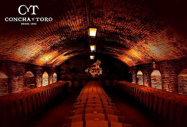 Wine Tour o Catas de vino en Viña Concha y Toro