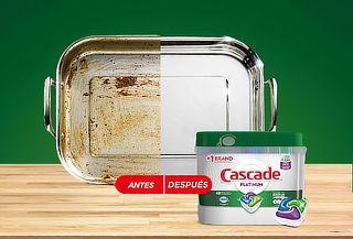 Detergente Lavavajillas Cascade 48 Capsulas