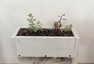 ¡Eco Jardinera Lista! Color Blanco + 2 Kg de Sustrato y Más