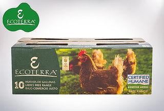 40 o 100 huevos L de gallinas libres de praderas.