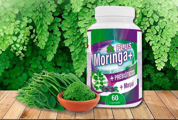 60 Cápsulas Energizante con Maqui y Prebióticos Moringa Plus