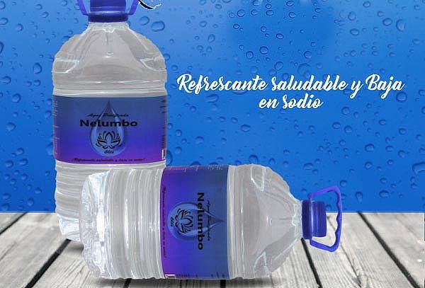 Agua purificada Nelumbo 6 litros ¡Lleva 3 botellas X $4.290!