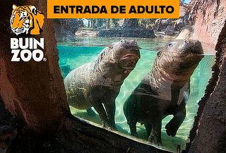 Entrada para Buin Zoo para adulto