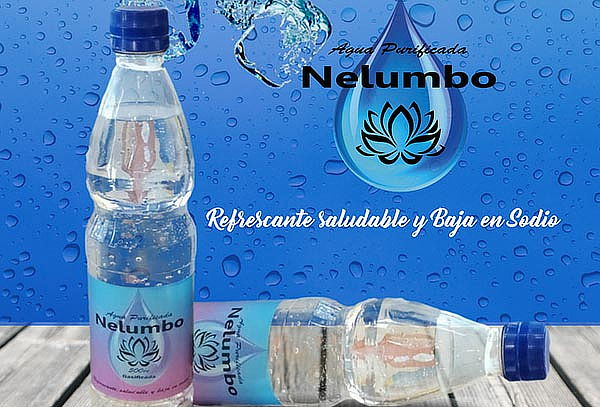 Agua Purificada Nelumbo 500 cc