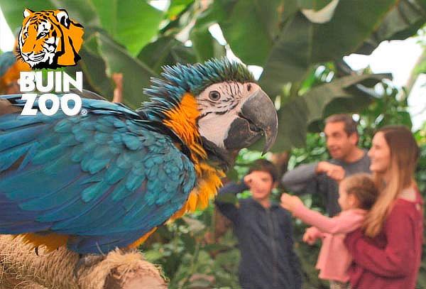Entrada Buin Zoo para niño