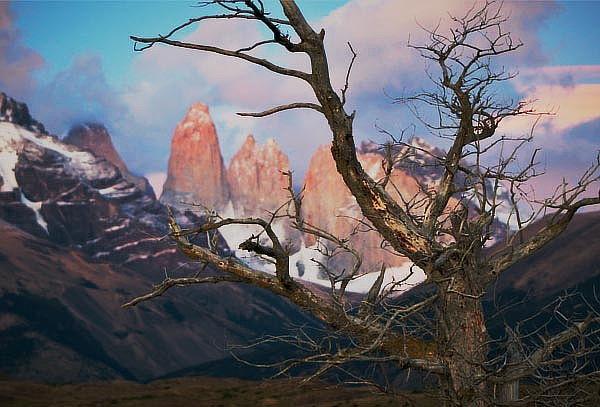 Torres del Paine Tricolor (4D/3N) +traslado